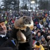 PETA Wants A Robot for Groundhog's Day