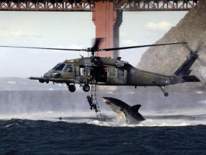 photoshop shark attacking helicopter